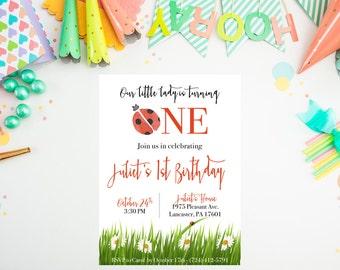 DIGITAL Ladybug First Birthday Party Invitation, Ladybug Birthday Party Theme, Digital Printable Ladybug Party Decor, First Birthday ANY AGE