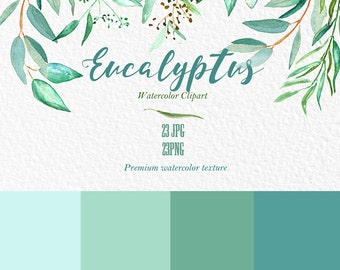 Eucalyptus  branches watercolor clipart hand drawn. Romantic wedding, mint green, tender green branches, wedding invitation.