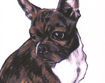 Boston Terrier art print, BT art images,signed giclée print,Boston Terrier wall art,B.T. in art, B.T. fine art print,brindled Boston Terrier