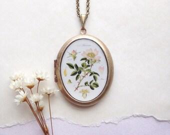Botanical Wild Rose Locket - Vintage Floral Plate Illustration - Rosa Necklace