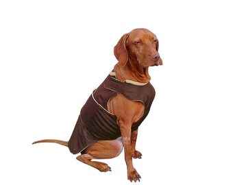 Vizsla Dog Raincoat - Brown Dog Jacket - Custom Dog Clothes - Waterproof Dog Coat - Dog Rain Coat - Custom made for your dog