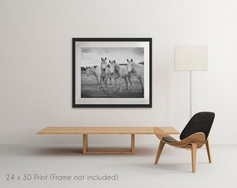 Large Print Photo 24x30 inches Rustic Decor Horse Print Fine Art Photography print Rustic Modern Decor Wall Art print 4 Horses
