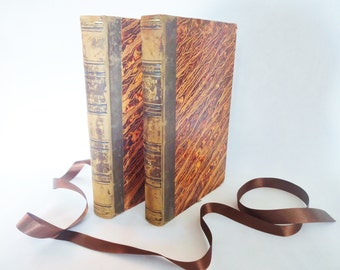 Gulliver's Travels by Jonathan Swift / 1838 Antiquarian Edition in 2 Volumes / Beautifully Illustrated Throughout by Grandville / IN FRENCH