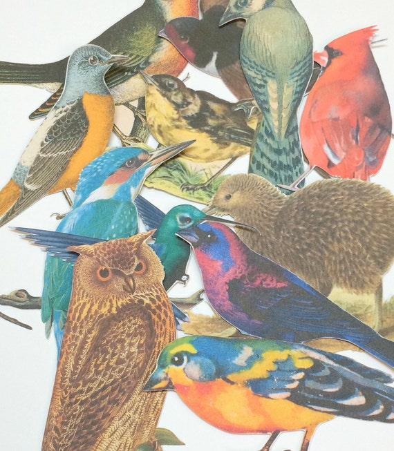 Birds Paper Embellishments,Vintage Birds Die Cuts,Art Journal Supplies,Scrapbooking,Mixed Media Supplies,Scrapbook Die Cuts,Bird Cut Outs