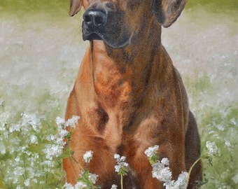 Custom Dog portrait, Pet portrait, Dog Painting, Ridgeback - oil painting on stretched canvas, from your photographs