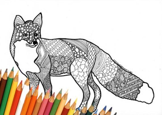 Volpe pagina da colorare volpe disegno da colorare volpe - Phoenix pagina da colorare ...