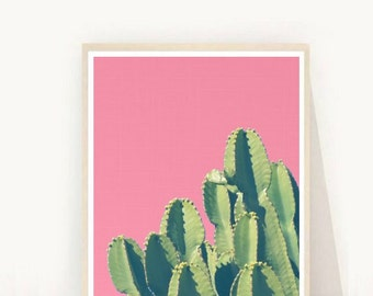 Cactus Photo, Desert Print, Cactus Art Print, Printable Art, Cactus Photography, Pink  Wall Decor, Wall Art, Instant Download