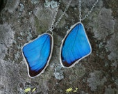 Bright Blue Morpho-  Real Butterfly Wing Necklace, bohemian jewelry, summertime, natural garden, statement