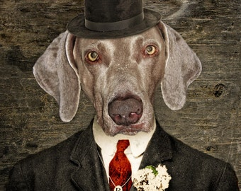 Weimaraner Art Dog Print Dogs Gray Dog Animal Photography Pet Portrait Gifts for Dog Lovers - Monsieur Rigg