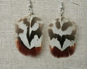 Small Pheasant Feather Earrings - Brown and white stripy Reeves pheasant feather earrings