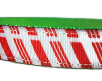 """Candy Cane Nylon Dog Collar * 1"""" Width Only * Buckle Collar * Christmas Dog Collar * Martingale Collar * Chain Martingale"""