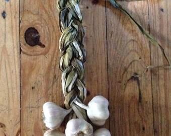 Garlic Braid - Certified Naturally Grown