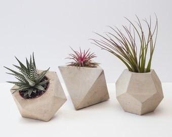 Set of 3 Large Geometric Concrete Planters / Plant Pots (Plants Included)