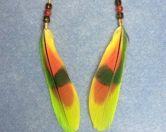 Orange winged Amazon tail feather earrings adorned with green and orange Czech glass beads.