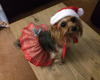 Xmas dog skirt / tutu for fancy dress costume