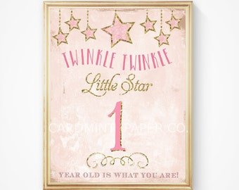 Twinkle Twinkle Little Star Vintage Matching Sign Table Decor Party Decorations Pink Gold Party girl First Birthday Digital Printable