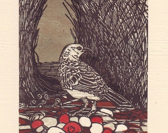 Linocut of a Great Bowerbird (Treasures in the bower)