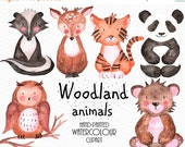 SALE Woodland Animals Clipart, Watercolour Clipart, Commercial Use,  Hand-painted Clipart, Animals Clipart,  Watercolour Clip Art,