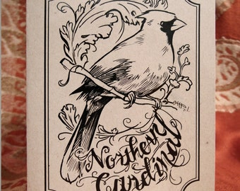 Northern Cardinal Cards & Envelopes (5-of-a-Feather pack)