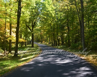 Road To Happiness, Nature Photography, Wall Decor, Fine Art, Landscape Photograph, Home Decor