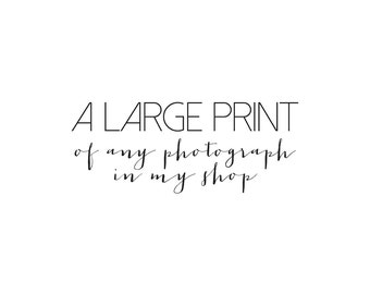 A Large Print of any photograph in my shop, Large Wall Art, Photography Print, Fine Art Photography