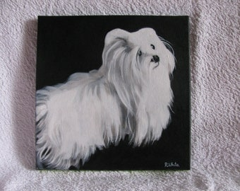 A Beautiful original oil painting of a Maltese Terrier.