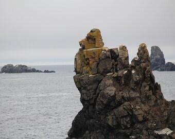 Bonavista, Newfoundland Rocky Ocean Photo Digital Download