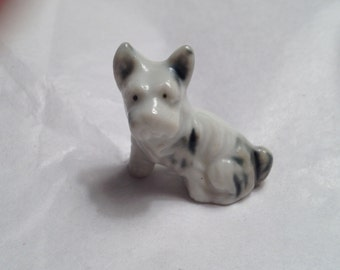 Spunky, Cute High Gloss Blue/Gray/Black Terrier - Adorable Pointed Ears, Sweet Face - A Lotta Love in a Little Package