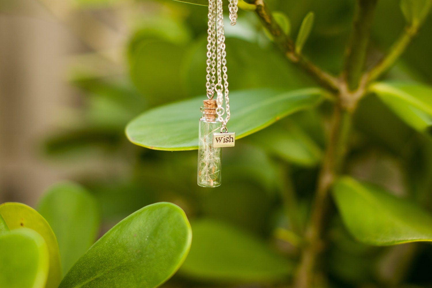 Wish Necklace Make a Wish Necklace with Dandelion flower seeds
