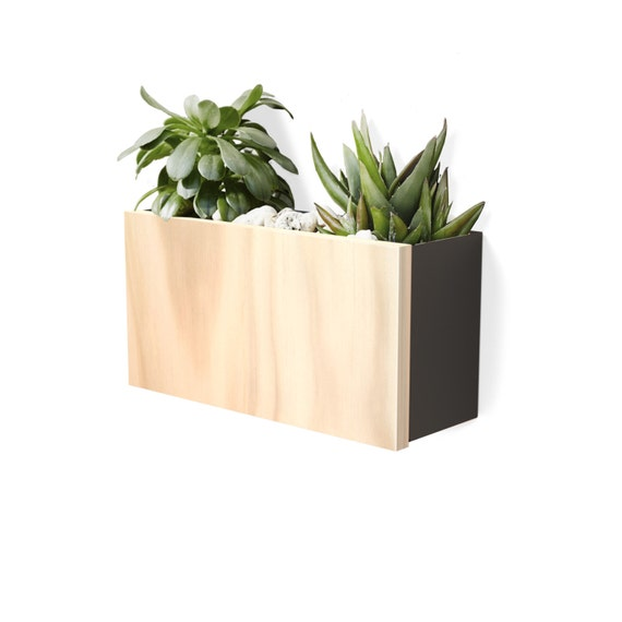 Modern Wall Planter - Charcoal Powdercoated Aluminium Body, Stainless Steel Hardware + Timber Front.