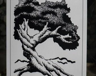 A Twisted Tree