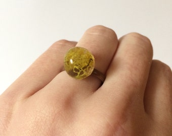 Adjustable Moss Ring, Bronze or Gold Ring, Moss Globe Ring, Moss in Resin