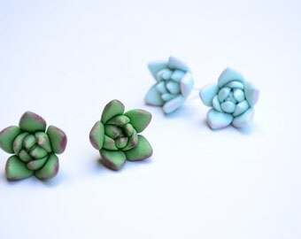 Mint green  succulent stud earrings. Wedding succulent studs jewelry. Rustic studs earrings. Rustic jewelry. Planter stud earrings