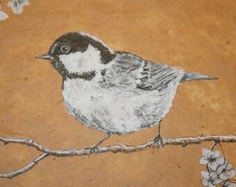 Coal Tit, Bird Art, Original Ink Drawing