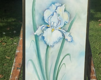 White Iris in Green
