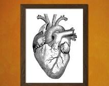articles uniques correspondant organe du corps humain etsy. Black Bedroom Furniture Sets. Home Design Ideas