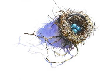 Robin's Nest - Giclee PRINT of Watercolor painting