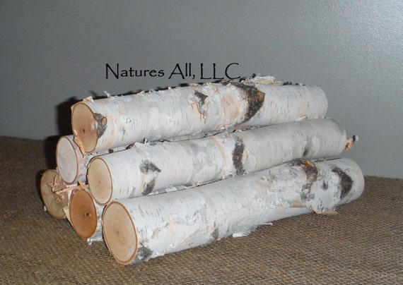 White Birch Fireplace Logs/KILN DRIED/Empty Fireplace Decor/Fill A Space/6 PC. Set/12 Inch Lengths/2-3 Inch Diameters/Shipping Included
