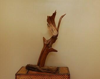 Driftwood Sculpture, Driftwood Art, Driftwood Bird, Driftwood Decor, Interior Designers, Driftwood Display, Home Decor, Wood Sculpture