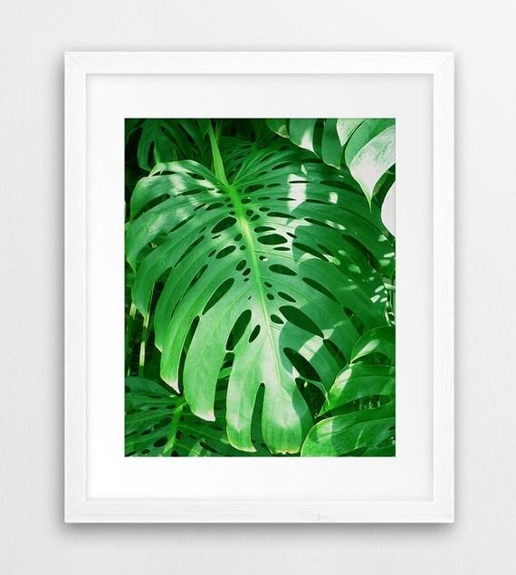 Tropical Leaves Wall Decor : Tropical leaf print monstera wall art decor