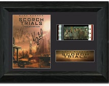 Maze Runner:The Scorch Trials Framed Film Cell 35 mm Film Cell Stunning display Signed Dylan O'Brien