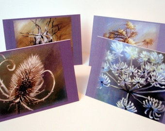 Cards - Autumn Seedhead Set of 8 blank artcards (greeting cards) with envelopes, depicting the artwork of Suzie Nichols thistle teasle