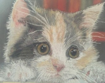 Cat pastel portrait fine art limited edition (signed and numbered)  print