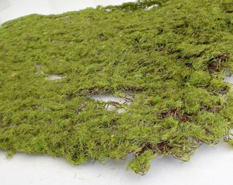 Garden wedding. Photo prop. Artificial greenery. Terrarium supplies Topiary Miniature garden Fairy garden Floristry Moss mat Fake moss sheet