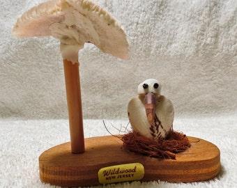 Wildwood New Jersey Souvenir Sculpture shells Seagull and Shell Umbrella