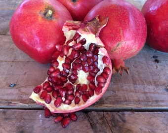 Fresh Certified Organic Large Pomegranates