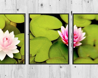 Water Lilies Triptych 3 Piece Wall Art, Flower Photography, Downloadable Wall Art, Lily Pad, Three Piece Wall Art