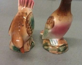 Vintage Pink Breast Birds Salt and Pepper Shaker Set