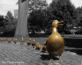 Make Way for Ducklings - Black and white and color, Boston Public Garden, landmarks, landscape, 8x10 Art Print, Photo Mat