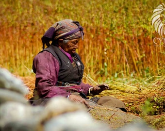 Nepalese Lady Farming